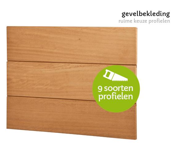 houten gevelbekleding t Goor